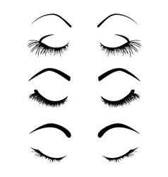 Set of four eyelashes vector image
