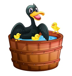 A mini pool with a duck and her ducklings vector image
