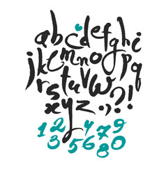 latin calligraphy alphabet and numbers vector image