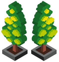 3d design for tree in cement block vector image