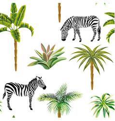 animal zebra palm trees cactus seamless white vector image