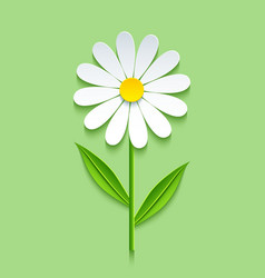 Background with 3d chamomile vector image