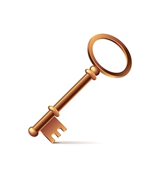 Bronze key isolated on white vector image