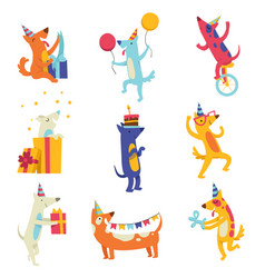 collection of cute dogs in party hats funny vector image
