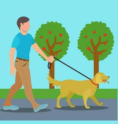 Man walking dog in park vector