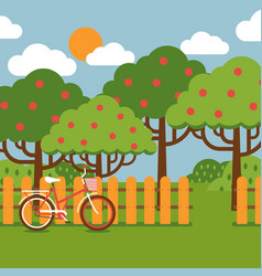 Orchard landscape in flat style vector
