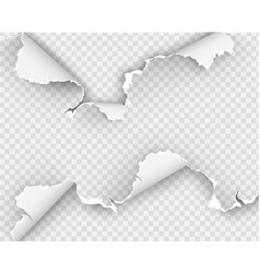 Ripped holes on transparent background vector