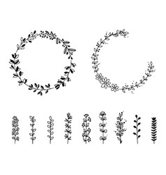 set of wild flowers and wreaths isolated vector image vector image