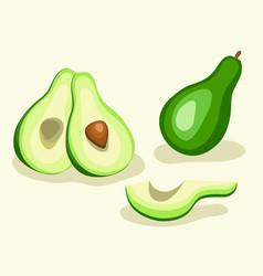 avocado vegetable set vector image