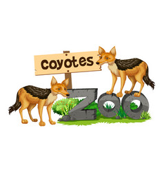 Coyotes on the zoo sign vector