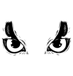 drawing of the eyes owl on white background vector image