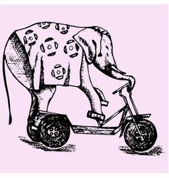 Elephant riding a bike vector