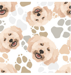 Pattern poodle dogs paws vector