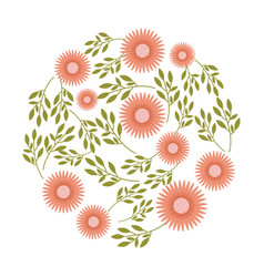 round flower leaves decoration nature spring vector image
