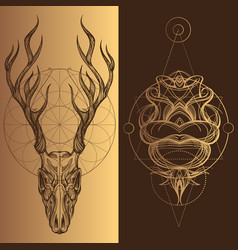 Skull of a deer with horns a set of elements in vector