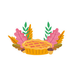 thanksgiving pie acorn leaves foliage on white vector image