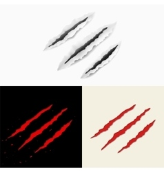 Set of claw scratches vector image vector image