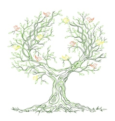 graphic green branchy tree with birds vector image vector image