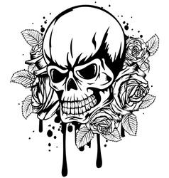 skull roses vector image vector image