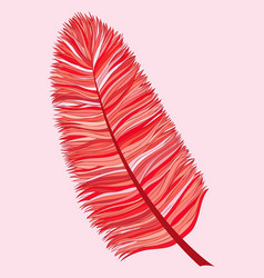 abstract hand drawn feather vector image