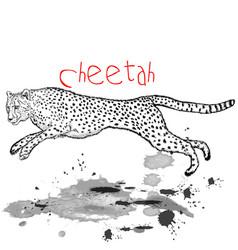 Cheetah animal jump with ink spots vector