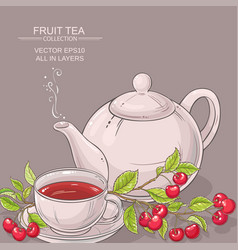 cherry tea backgrond vector image