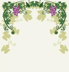 Decorative grapes vector image