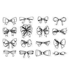 hand drawn collection lush bows and vector image
