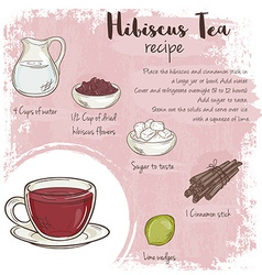 hand drawn of hibiscus tea recipe with list of vector image