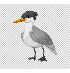 wild bird on transparent background vector image