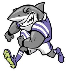 rugby shark mascot vector image