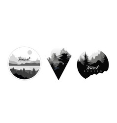 beautiful monochrome landscapes set wild forest vector image