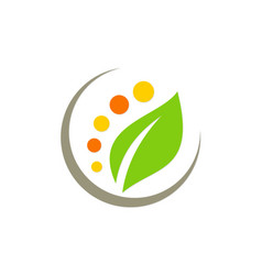 green leaf nature beauty spa logo vector image