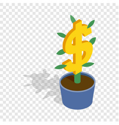 money tree isometric icon vector image