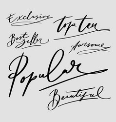Popular and best seller hand written typogr vector
