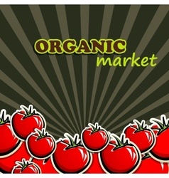 tomatoes organic food concept vector image