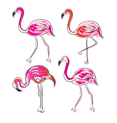 hand drawn sketch pink flamingo set vector image vector image
