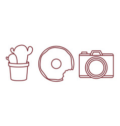 Camera donut and cactus icon vector
