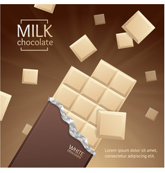 chocolate package bar blank - white pieces vector image