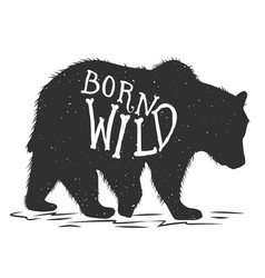 born wild silhouette grizzly bear on grunge vector image