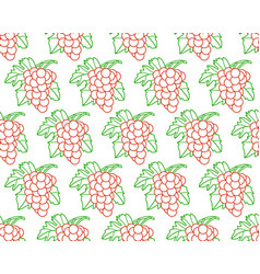 Bunch of grapes contour pattern vector