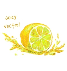 Drawing slice of lemon vector