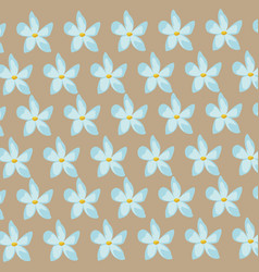 flower jasmine ornament seamless pattern vector image