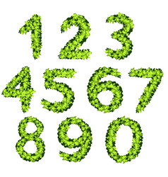 font design for numbers with grass texture vector image