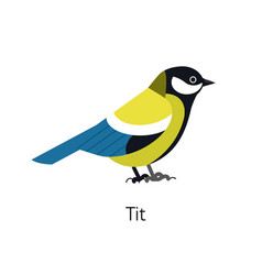 great tit isolated on white background cute funny vector image