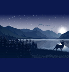 Night on sky mountains landscape with deer vector
