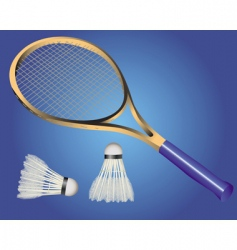 Racquet and two shuttle badminton vector