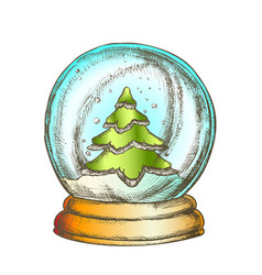 snow globe with fir-tree souvenir vintage color vector image