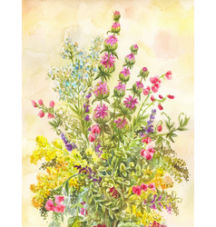 Watercolor bouquet wildflowers hand-drawn vector