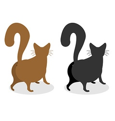 Cat Back Pet escapes Funny animal with bushy tail vector image